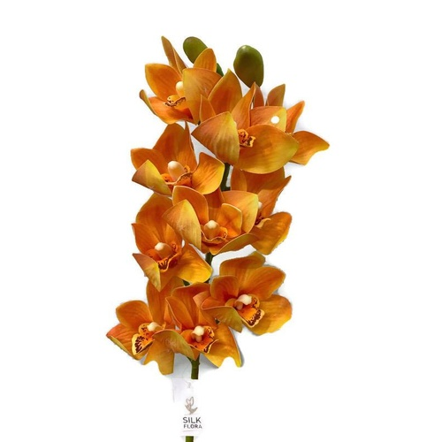Cymbidium Orchid Spray - AL015-ORG