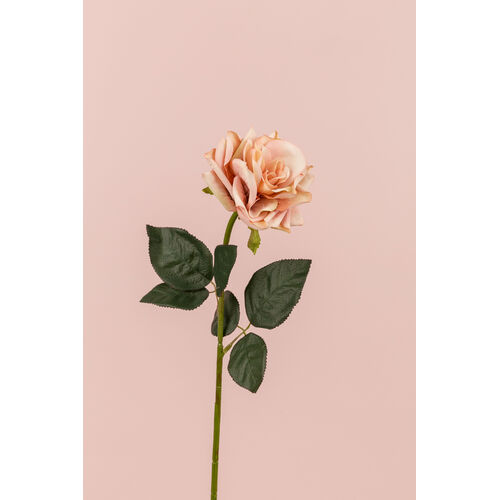 Single Rose Stem BF017-PEACH
