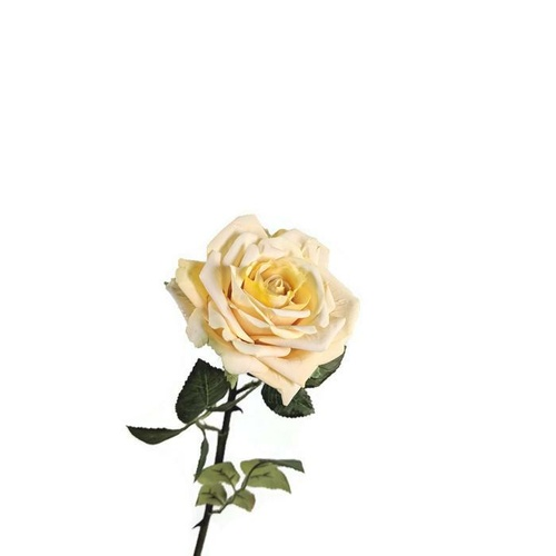 Single Rose EE0044-YEL