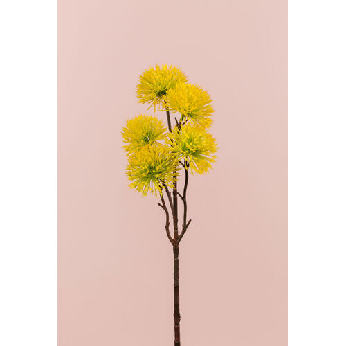 Mimosa spray FB0006-YEL