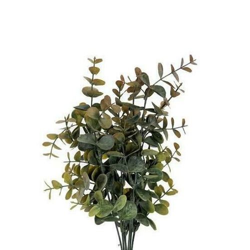 Eucalyptus bunch FB0073-PCH