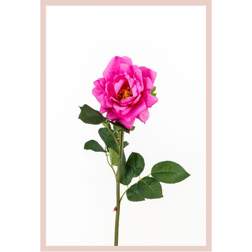 Single Real Touch Garden Rose FB0077-MAG