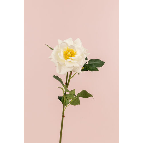 Single Real Touch Garden Rose FB0077-WH
