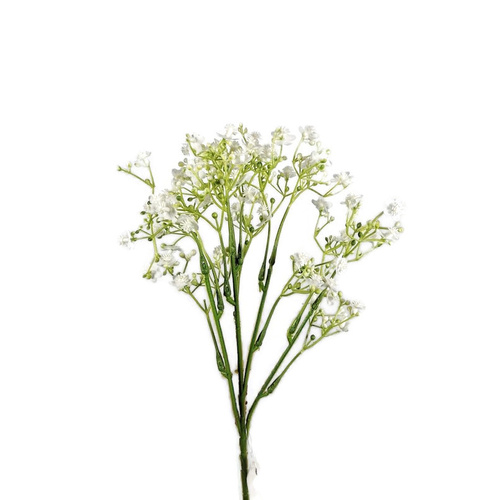 Gypsophila Spray