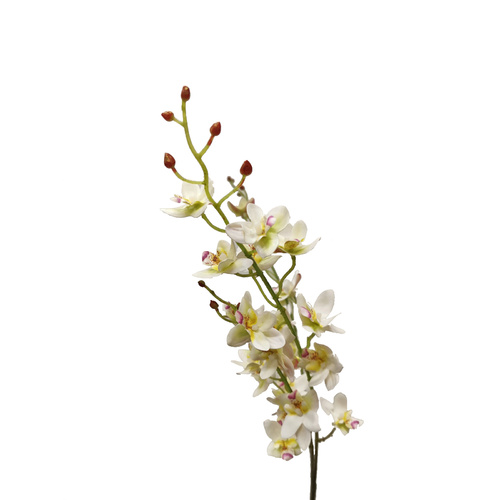 Small Orchid Spray FE014-WHITE