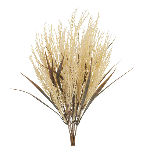 Plume Grass Bush FI8213CR