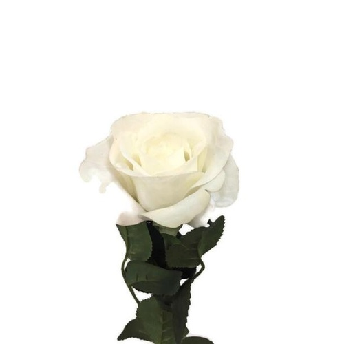 Rose Real Touch 1/2 Bloom-White GL12711