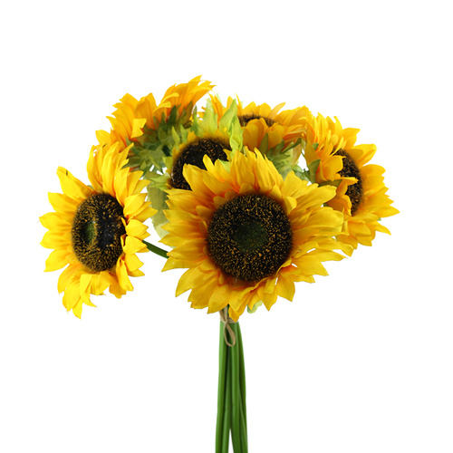 SUNFLOWER BUNCH HF4640