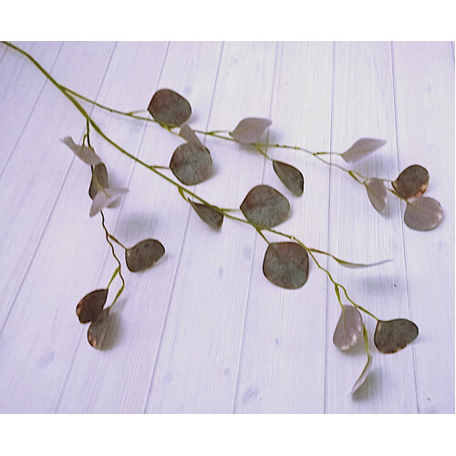 Eucalyptus Drop Leaf Dollar Gum Spray JI2121BG