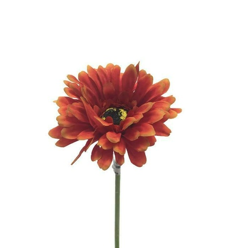 Gerbera single stem LB033-OR