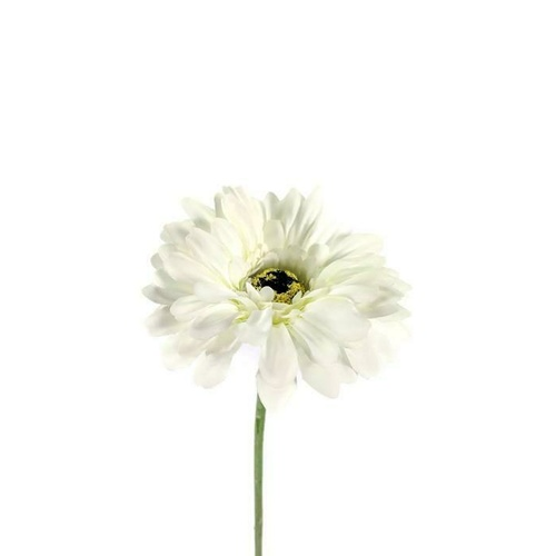 Gerbera single stem LB033-WH
