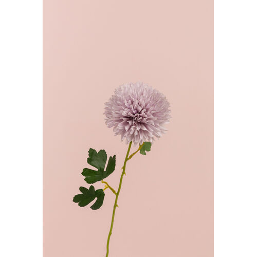 Chrysanthemum tall LB058-L-PINK
