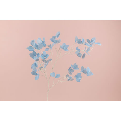Leaf Spray LB079-BLU